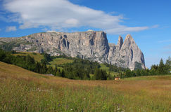 Mount Sciliar in the Dolomites Stock Photography