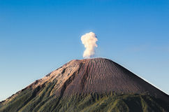 Mount Semeru Royalty Free Stock Photography