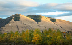 Mount Sentinel. The famous 'M' in Missoula, Montana in autumn Stock Image