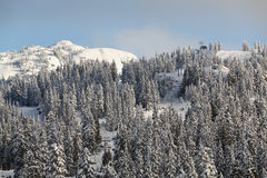 Mount Seymour Peak, Fresh Snow, Vancouver Royalty Free Stock Photos