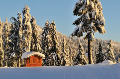 Mount Seymour in winter Stock Photos