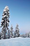 Mount Seymour Winter Morning Stock Photo