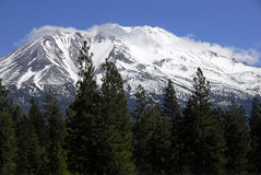 Mount Shasta California Royalty Free Stock Photography