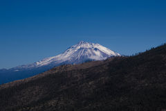 Mount Shasta, California. Distant photo of Mount Shasta, in northern california. Hillside with trees in foreground Royalty Free Stock Images