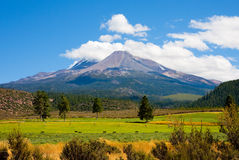 Mount Shasta Royalty Free Stock Images