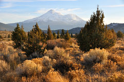 Mount Shasta in the Fall Stock Photos