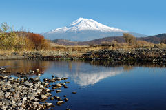 Mount Shasta Reflection. Mount Shasta Reflected in Creek under Clear Blue Sky, Northern California, USA, Portrait Composure Royalty Free Stock Photo