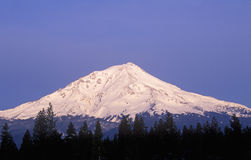 Mount Shasta at Sunrise Stock Photography