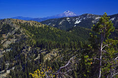 Mount Shasta from Trinity Alps Royalty Free Stock Images