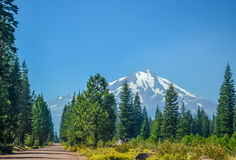 Mount Shasta Stock Image