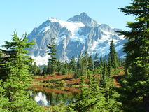 Mount Shuksan Stock Images