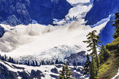 Mount Shuksan Glacier Evergreens Artist Point Washington State Stock Image