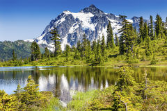 Mount Shuksan Glacier Evergreens Artist Point Washington State Royalty Free Stock Images