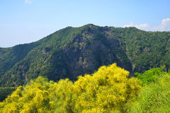 Mount Somma - Province of Naples, in the Campania region, Italy. Stock Images