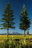 Mount Sopris Royalty Free Stock Image