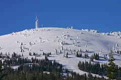 Mount Spokane. The summit of Mount Spokane in the winter Royalty Free Stock Images