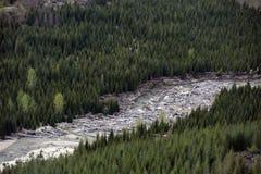 Mount St. Helens blast zone Stock Images