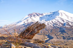 Mount St. Helens, USA Royalty Free Stock Photo