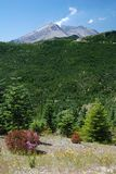 Mount St. Helens, Washington, USA Royalty Free Stock Photo