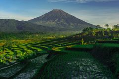 Mount sumbing. Located at magelang central java Indonesia Stock Image