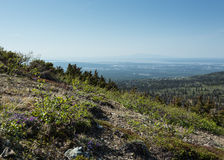 Mount Susitna and Anchorage Stock Photo
