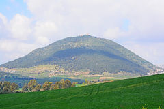 Mount Tabor , Israel. Mount Tabor in the spring , Israel Stock Images
