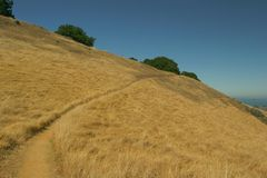 Mount Tamalpais Stock Photo
