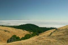 Mount Tamalpais Stock Image