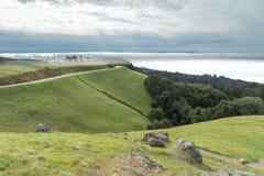 Mount Tamalpais Landscape in wintertime Royalty Free Stock Photos