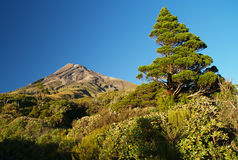 Mount Taranaki Stock Images