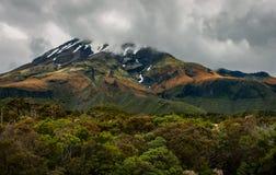 Mount Taranaki, New Zealand perfect volcano mountain. Snowy Mount Taranaki in the North Island of New Zealand. It is one of the 4 prominent volcanoes of the Stock Image