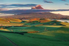 Mount Taranaki under the blue sky with grass field and cows as a foreground in the Egmont National Park. stock photography