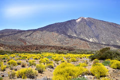 Mount Teide at Canary island Stock Images