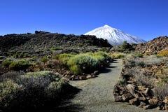 Mount Teide Stock Image