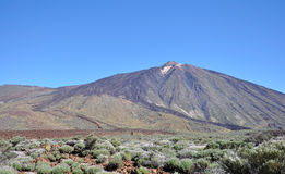 Mount Teide Stock Images