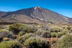 Mount Teide National Park Royalty Free Stock Image
