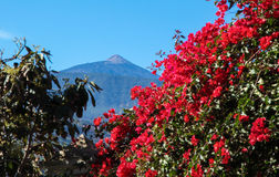 Mount Teide on Tenerife, Canary Islands, Spain Stock Images