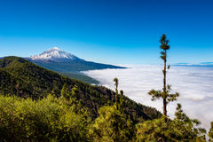 Mount Teide Tenerife Royalty Free Stock Images