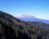 Mount Teide, Tenerife. Stock Images