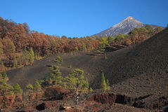 Mount Teide the volcano on Tenerife Stock Images