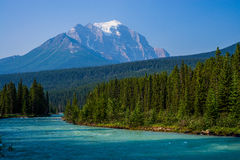 Mount temple, bow river Royalty Free Stock Image