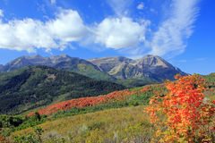 Mount Timpanogos. Royalty Free Stock Photo
