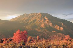 Mount Timpanogos sunset. Royalty Free Stock Photos