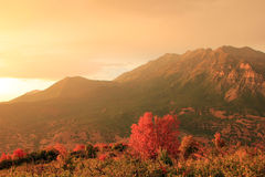 Mount Timpanogos sunset. Stock Photos