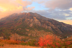 Mount Timpanogos sunset. Stock Photo