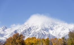 Mount Tom With Fresh Snow Stock Images