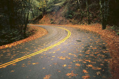 Mount Veder Road. Shot of a curve in the road on Mount Veder in Napa County near the summit Royalty Free Stock Photo