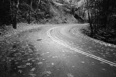 Mount Veder Road. Shot of a curve in the road on Mount Veder in Napa County near the summit stock photography