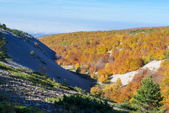 The Mount Ventoux, Vaucluse, France Royalty Free Stock Photos