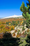 The Mount Ventoux, Vaucluse, France Royalty Free Stock Image